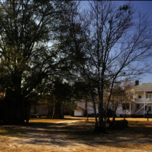 View from distance, Walnut Grove, Bladen County, North Carolina