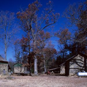 Outbuildings, Puckett Farm, Granville County, North Carolina