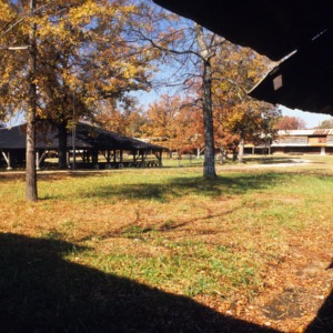 View of arbor from tents, Rock Springs Campground, Lincoln County, North Carolina