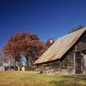 View, Outbuilding, Puckett Farm, Granville County, North Carolina