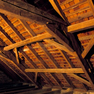 Rafter detail, Michael Braun House, Rowan County, North Carolina