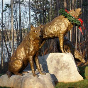 Alumni Wolves at Christmas