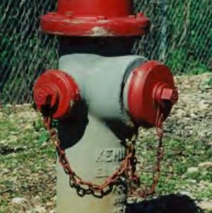Guardian fire hydrant