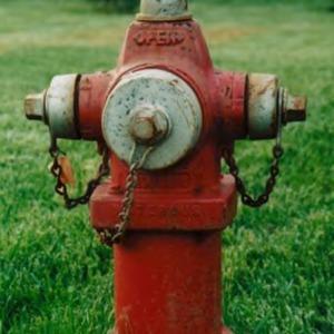 Waterous model fire hydrant