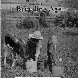 Raising dairy calves to breeding age (Extension Circular No. 177, Revised Reprint)