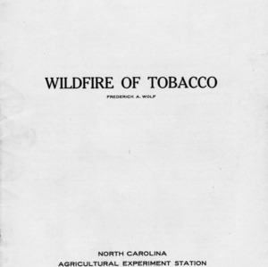 Wildfire of tobacco (Bulletin 246)