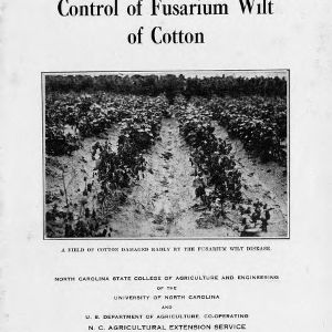 Control of fusarium wilt of cotton (Extension Circular No. 233)
