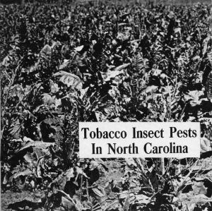 Tobacco insect pests in North Carolina (Extension Circular 299, Reprint)