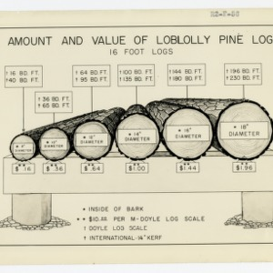 Amount and Value of Loblolly Pine Logs chart