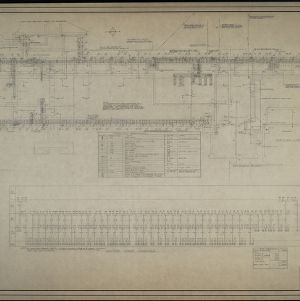 Sub-floor and steam tunnel plan