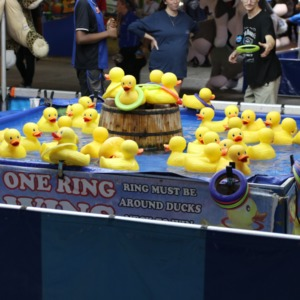 Rubber duck game at North Carolina State Fair, 2018