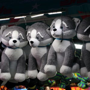 Stuffed animals at prize booth at North Carolina State Fair, 2018