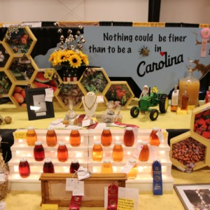 Honey display at North Carolina State Fair, 2018