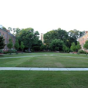 Alexander And Turlington Halls