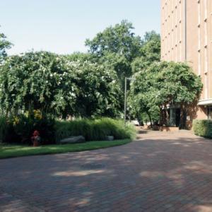 Near Carroll Residence Hall