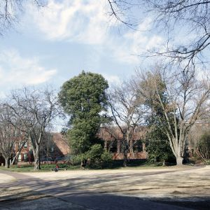 Winston, Caldwell, and Tompkins Halls