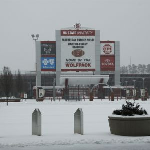 Carter Finley in Snow