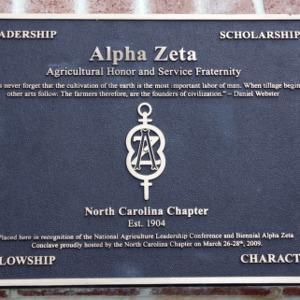 Plaque Alpha Zeta