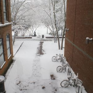 Snow between Caldwell and Tompkins Halls