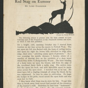The case of the wild red stag on Exmoor