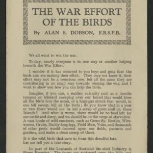 The war effort of the birds