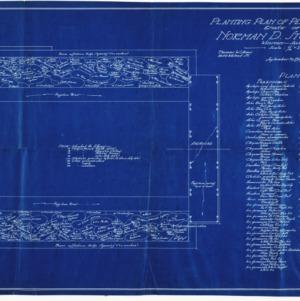Estate of Norman D. Stockton -- Planting Plan of Perennial Garden
