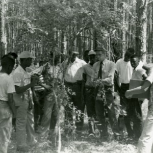 Young African American men at instruction in forest