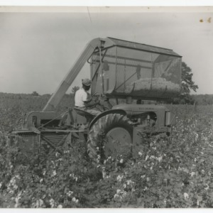 A Photograph of a Man Operating a Cotton Picker