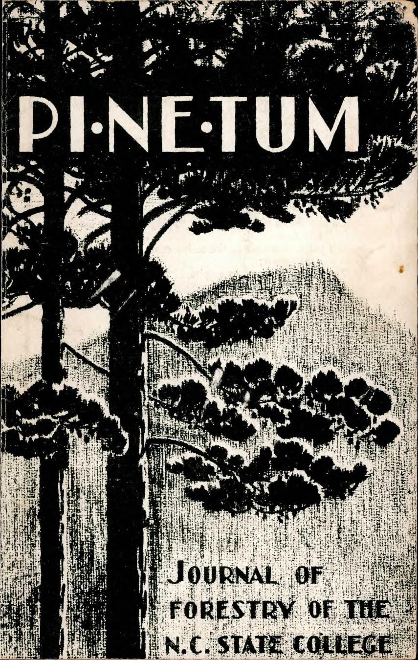 1934 Pinetum
