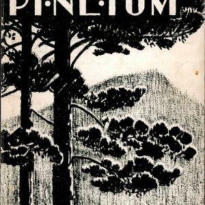 Pinetum 1934