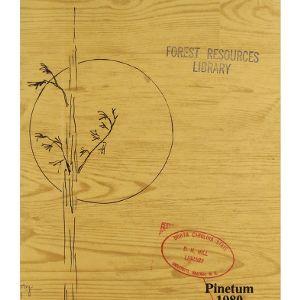 Pinetum, 1980