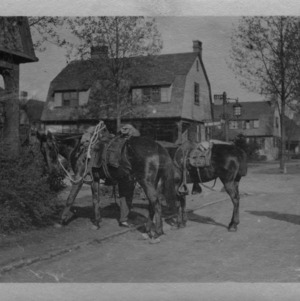 Two men with horses in Biltmore Village