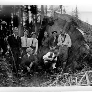 Students With Large Log