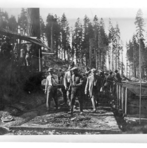 Students and Logging Operation