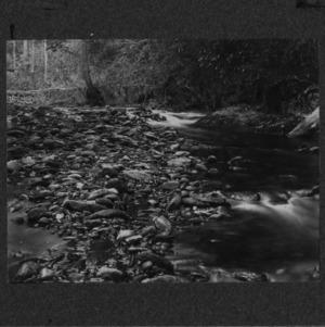 Big Creek [#1]