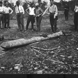 Biltmore Forestry students by logs