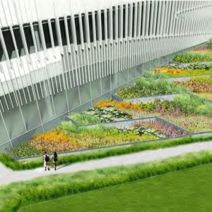 James B. Hunt Library rendering -- Rain Garden