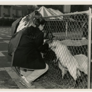 Students bond with goats during Agricultural Awareness week