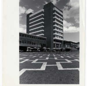D.H. Hill Jr. Library exterior