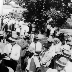 Crowd for Livestock Train on the Atlantic Coast Line Railroad