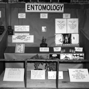Exhibit on Entomology
