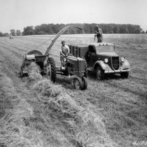 Agricultural machinery harvesting dry alfalfa