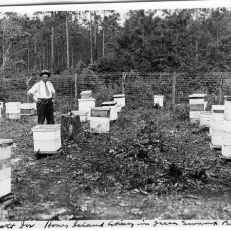 R. W. Scott, Jr. and his Honey Island Apiary in the Green Swamp of Bolton, NC