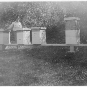 Beekeeper David F. Merrill with modern hives