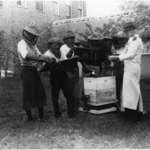 Beekeeping in back of old Zoology Building