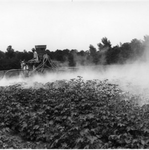 Tractor applying pesticide to crops