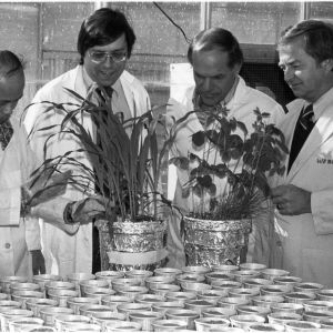 Dr. Jang Szu Su, Dr. Michael Overcash, Dr. William Tucker, and Dr. Jerome Weber in greenhouse laboratory with soil experiment