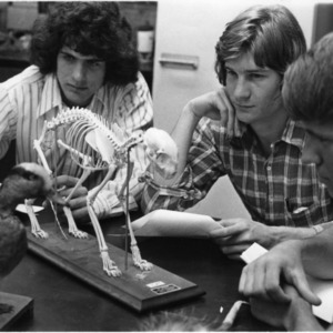 Group examining animal skeletons and taxidermied duck