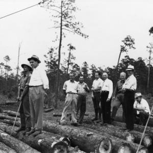 Men observing sawing observation in Hofmann Forest