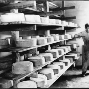 Curing room, Kraft-Phenix Cheese Company